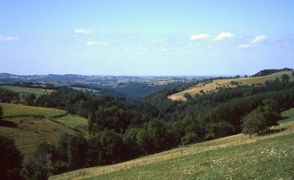 Vallée de la Dore vers Sauviat