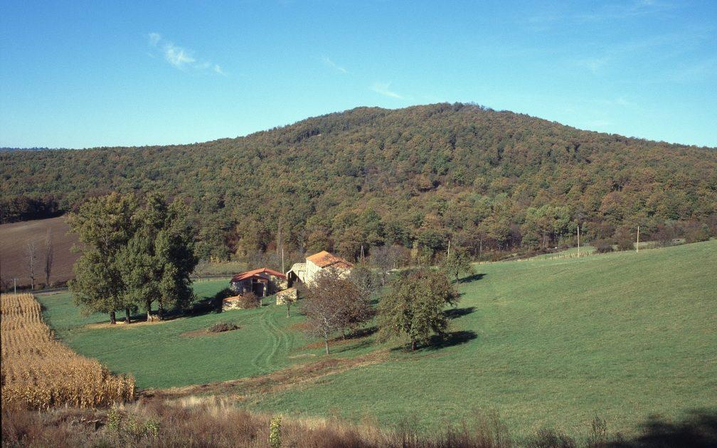 La Comté