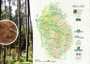 Guide de reconnaissance des unités stationnelles forestières du Livradois-Forez 2007