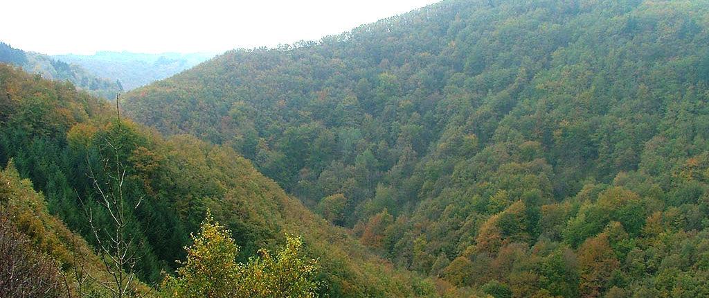 Vallée de la Credogne