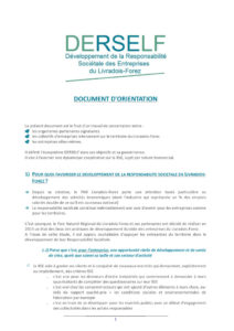 Document d'orientation DERSELF