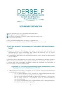 Document d'orientation DERSELF