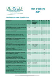 Plan d'action DERSELF 2014