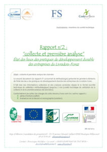 Rapport 2 : Collecte et analyse - Projet DERSELF