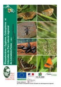 Diagnostic sur les Rhopalocères / Zygènes, les Coléoptères et les Odonates