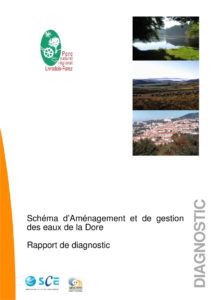 Rapport de diagnostic - 2010