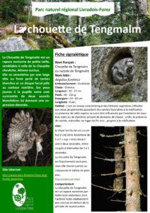 Fiche espèce (PDF - 1Mb)