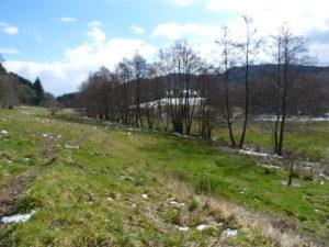 Ruisseau du Fonghas, Noirétable (2016)