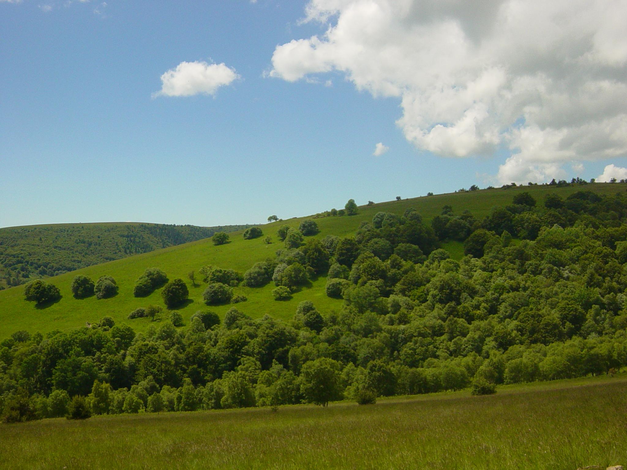 Monts du Forez © PNRLF
