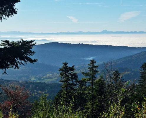 Monts du Forez © JC Corbel - PNRLF