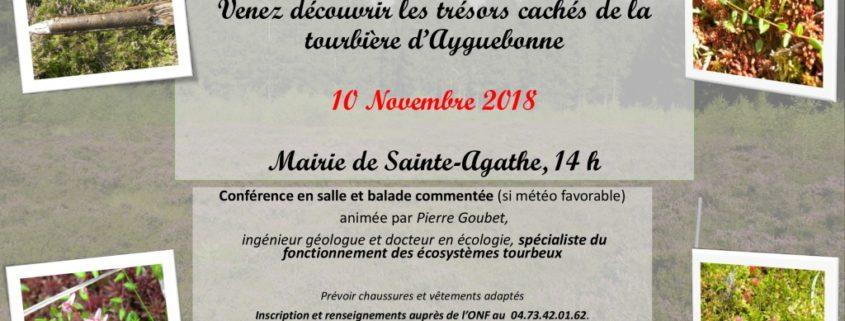 thumbnail of affiche_sortie_tourbière_10nov18