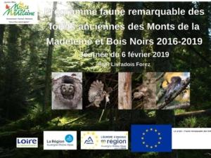 Programme forêts anciennes des Monts de la Madeleine