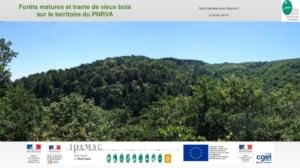 Préparation d'une méthodologie de définition des forêts remarquables et trame de vieux bois Parc naturel régional des Volcans d'Auvergne