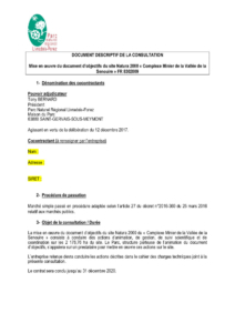 Document descriptif de la consultation (PDF - 406KB)